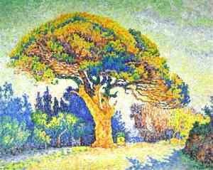 Paul Signac - The Pine Tree at St. Tropez, 1909