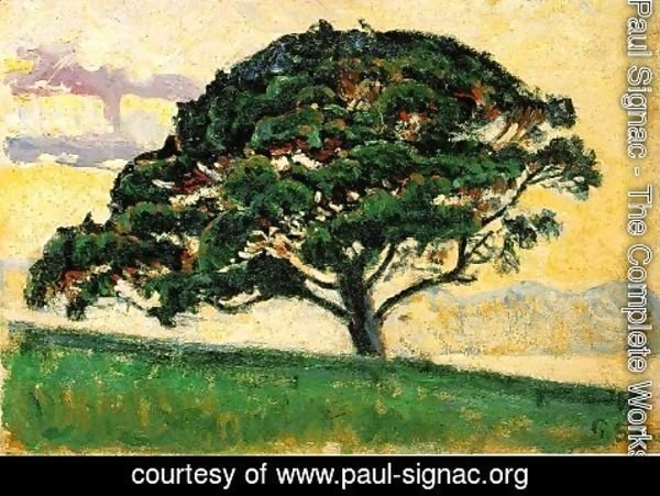 Paul Signac - The Large Pine, Saint-Tropez