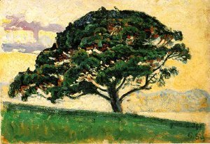 The Large Pine, Saint-Tropez