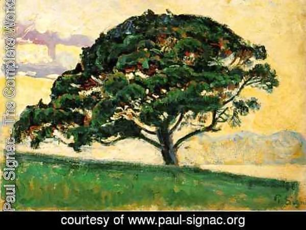 Paul Signac - The Pine, Saint Tropez